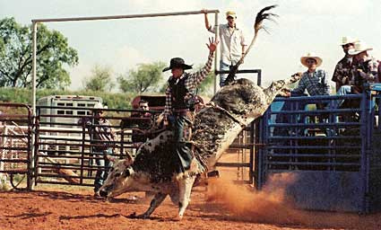 See real cowboys and some of the meanest steers in the west  at the Flying W Guest Ranch Rodeo